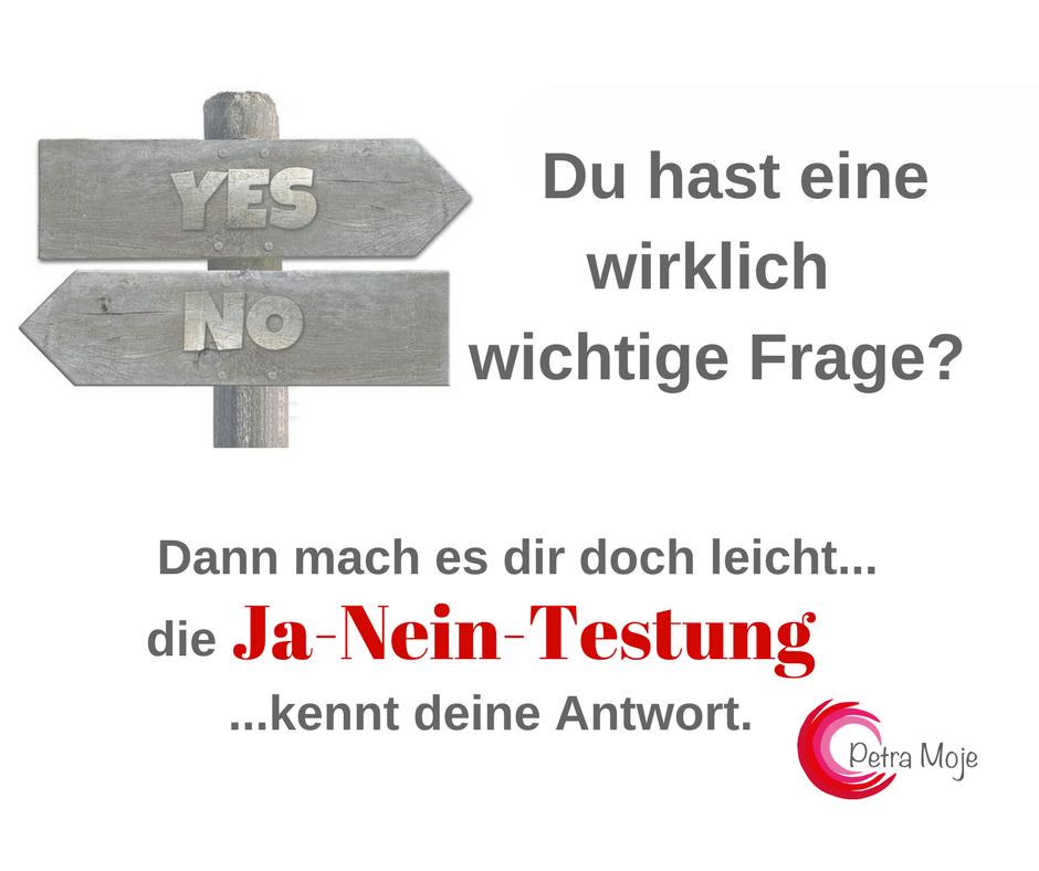 Kopie von Kopie von V5 Ja-Nein-Testung - Ratz Fatz Technik (2)